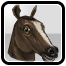 BFH Magnificent Horsehead