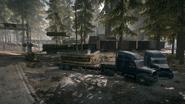Backwoods 11