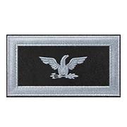File:Battlefield 1 Colonel.png