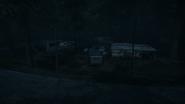 Night Woods 16