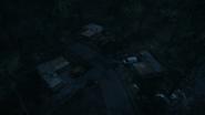 Night Woods 15