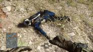 Dead pilot
