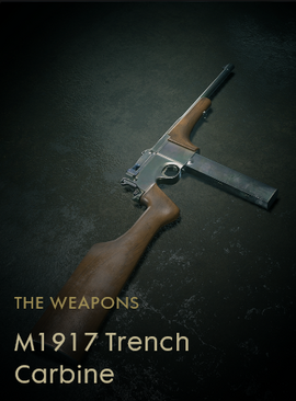 M1917 Trench Carbine Codex Entry