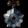 RU Army Service Medal
