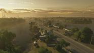 Everglades 05