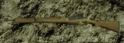 Type5BC2