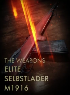 Elite Selbstlader M1916 Codex Entry