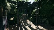 Argonne Forest Schwarzwald Trench 04