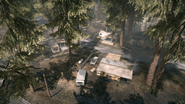 Backwoods 14
