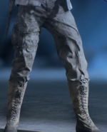 BFV Canned Fury Legs