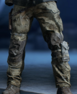 BFV Hazardous Conditions Legs