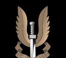 Специальная авиадесантная служба