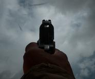 M1911 Iron Sights