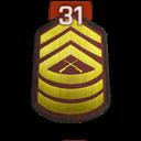 Rank 31