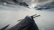 BF5 Skis 04