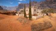 Sinai Desert 25