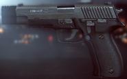 P226 Compensator Menu BF4