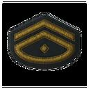 BF5 Captain Badge