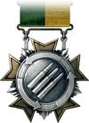 Support Service Medal