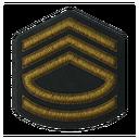BF5 Colonel Badge