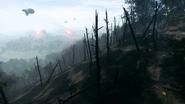 Argonne Forest 23