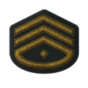 BF5 Lieutenant Colonel Badge