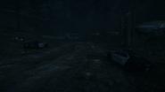 Night Woods 23