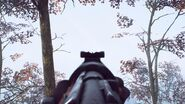 Commando Carbine ADS BF5