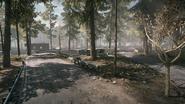 Backwoods 13