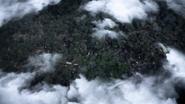 Argonne Forest 01