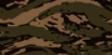 BFHL Forest Tiger Camo