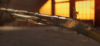 BFV M1897 Pacific Palm Skin