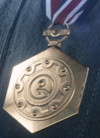 Field Logistics Merit Vehicle Medal