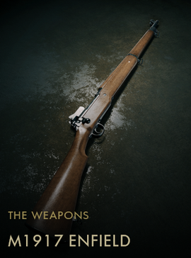 M1917 Enfield (Codex Entry)