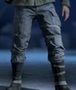 BFV Republique Legs