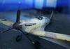 BFV Spitfire Mk VA Mediterranean