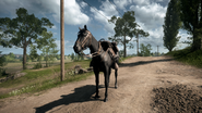 BF1 Horse Smokey Black
