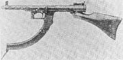 Nambu Type I