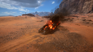 Sinai Desert 20