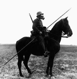 Cavalry Lance IRL