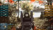 Ace iron sights