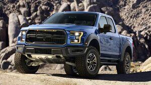 Pick-Up Truck IRL