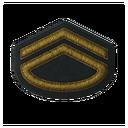 BF5 First Lieutenant Badge
