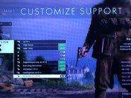 Support Pistols