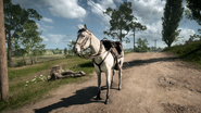 BF1 Horse White Gray