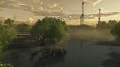 Everglades 49