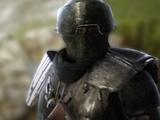 Farina Armor (Codex Entry)