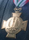 Operational Triage Merit Medal