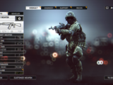 Battlefield 4 Customization
