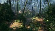 Argonne Forest 17